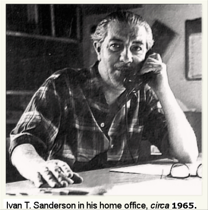 Ivan Sanderson at Desk
